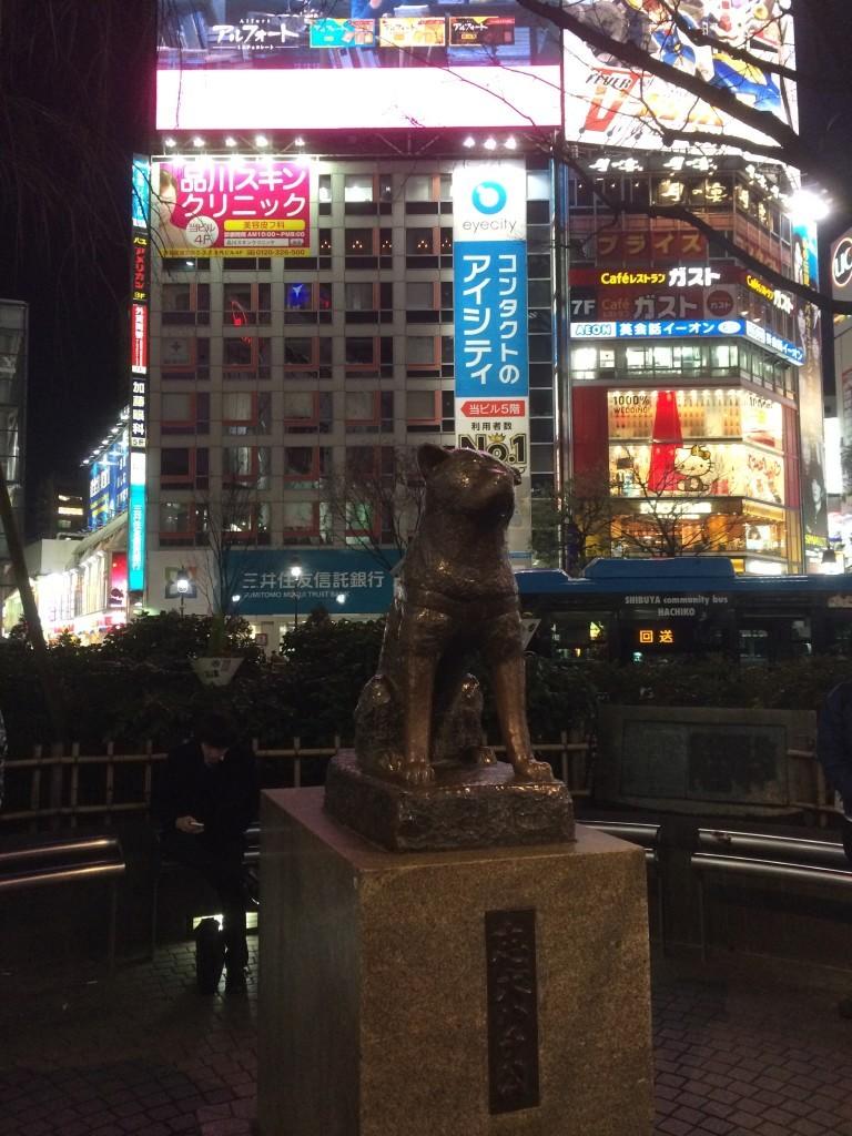 Pomnik psa Hachiko – według legendy odprowadzał on codziennie swojego pana na pociąg, czekając aż wróci. Niestety któregoś dnia pan zmarł, a pies przez kolejnych 11 lat przychodził i czekał dalej na swojego pana.