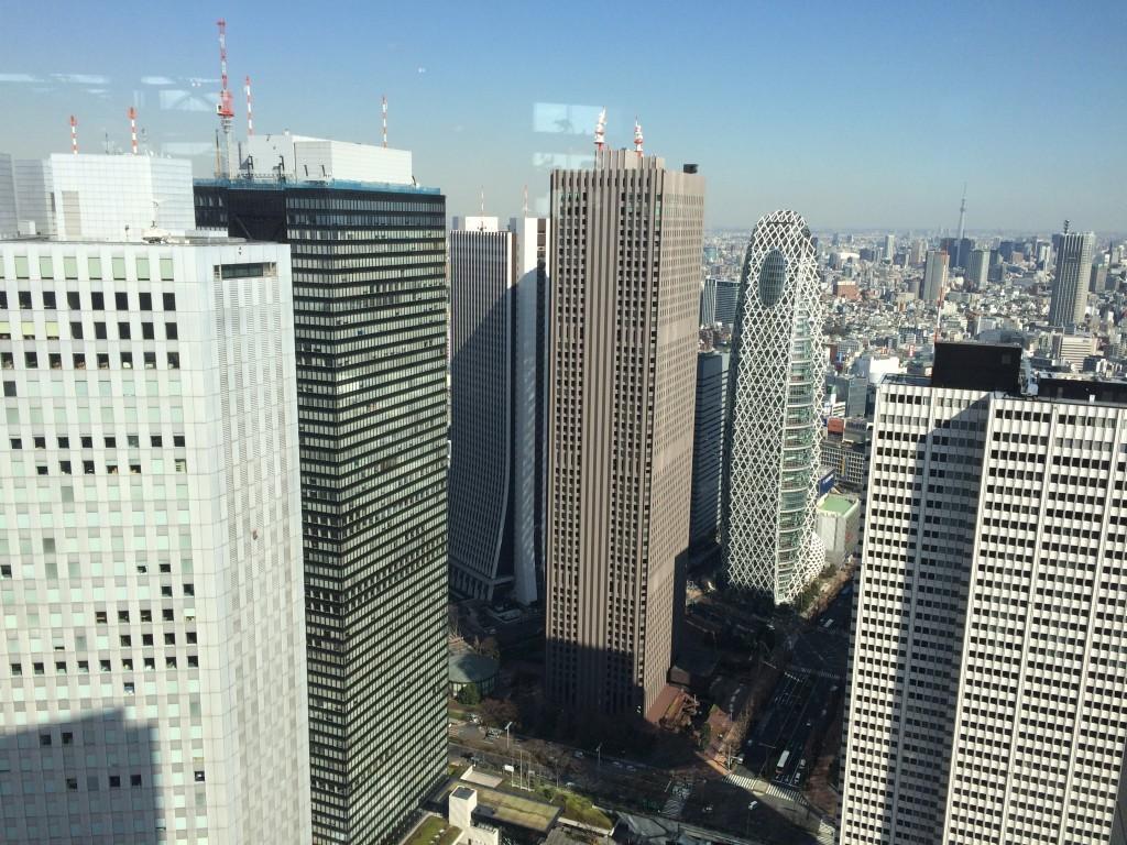 Widok z 45. piętra Tokyo Metropolitan Government Building