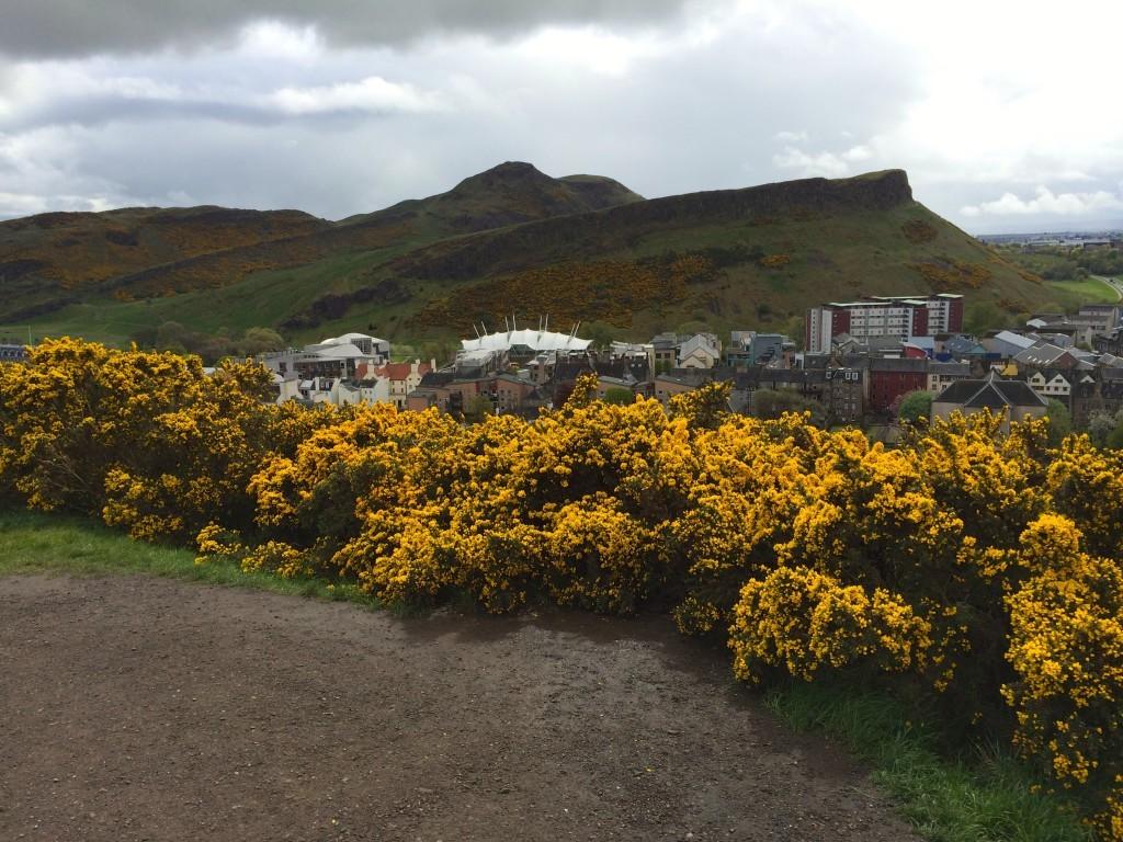 Szkocja Edynburg - widok na Górę Artura z Calton Hill