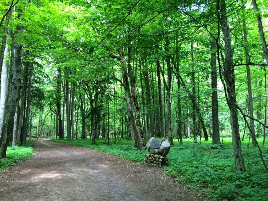 Za bramą do Białowieskiego Parku Narodowego
