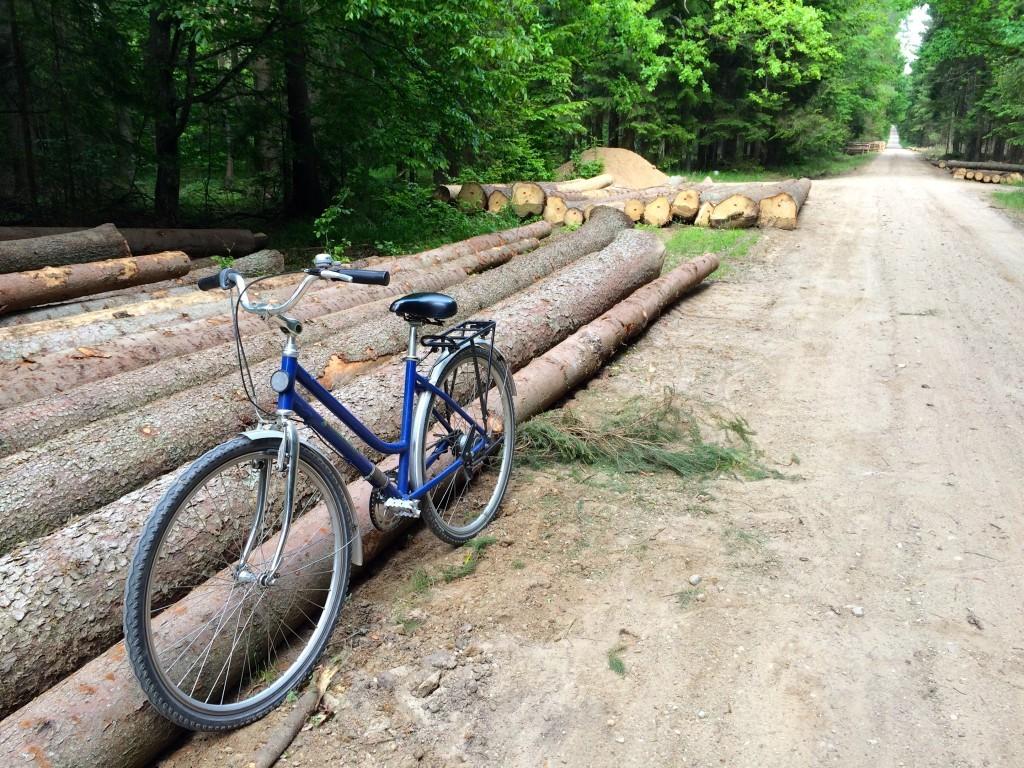 Na wyciecze rowerowej - jedziemy niebieskim szlakiem