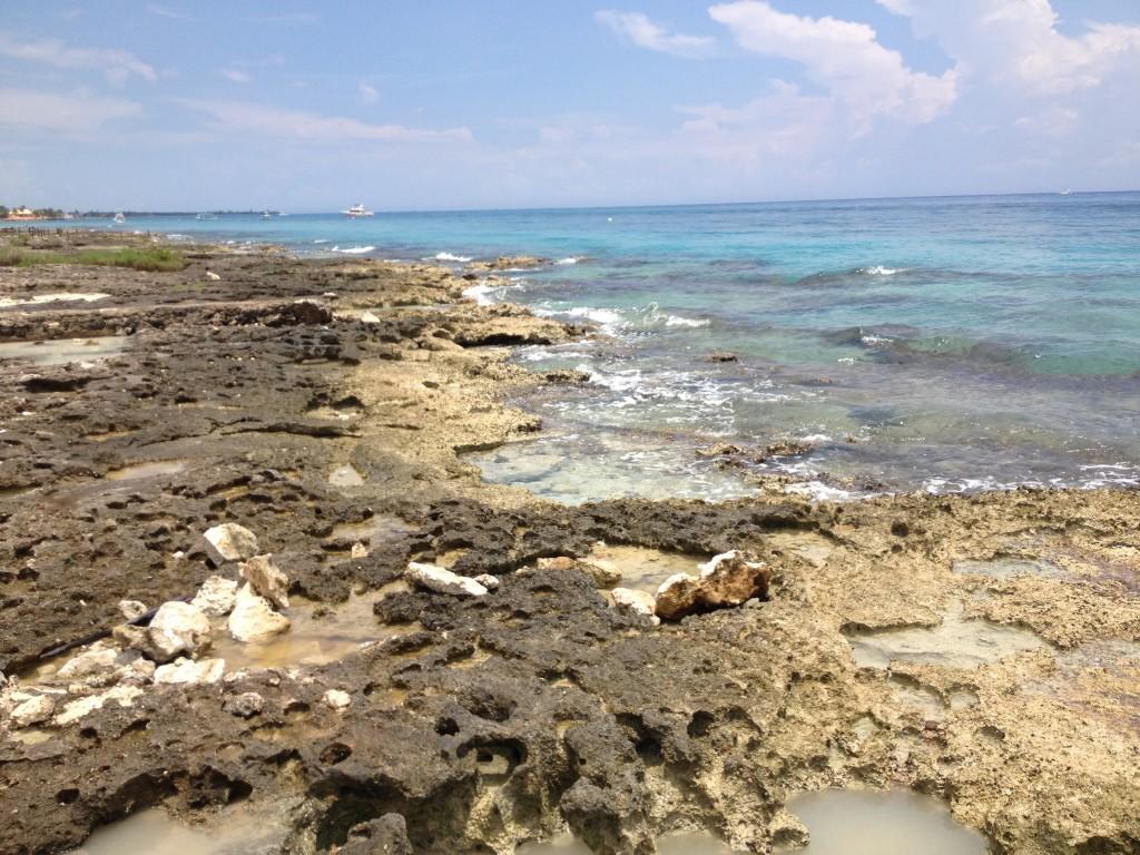 Skaliste wybrzeże egzotycznej wyspy Cozumel.