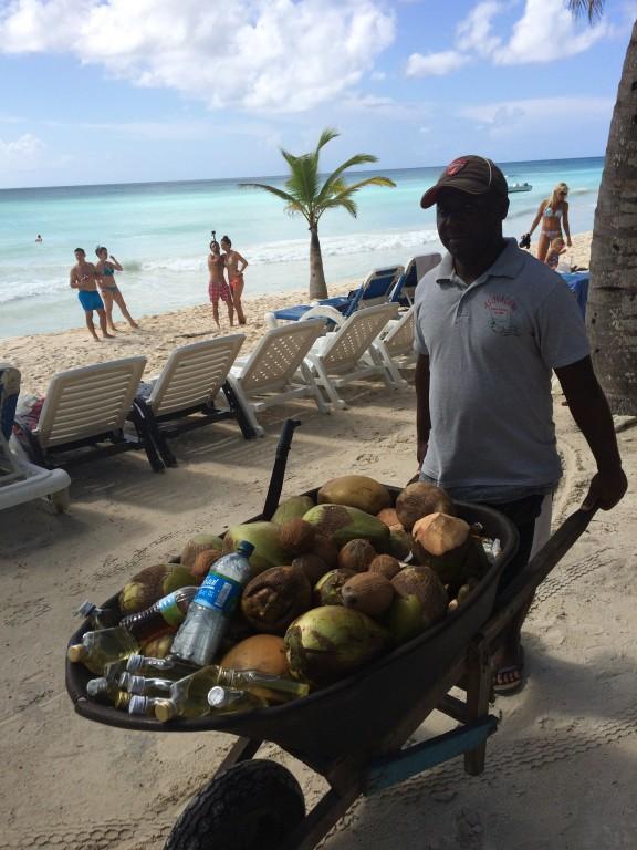 Kokosy prosto z palmy i najlepszej jakości olejki kokosowe.