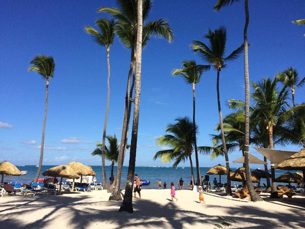 """To co najbardziej zachwyca to """"uciekające"""" do morza palmy."""