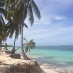 Dominikana – Karaibski rum, białe plaże, palmy i kokosy… RAJ!