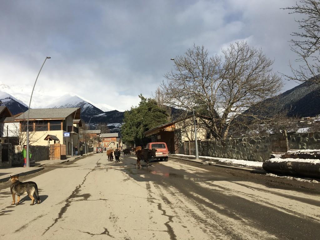 Gruzja Mestia Swanetia góry Kaukaz
