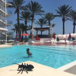 Ibiza – prawdziwie imprezowa wyspa.