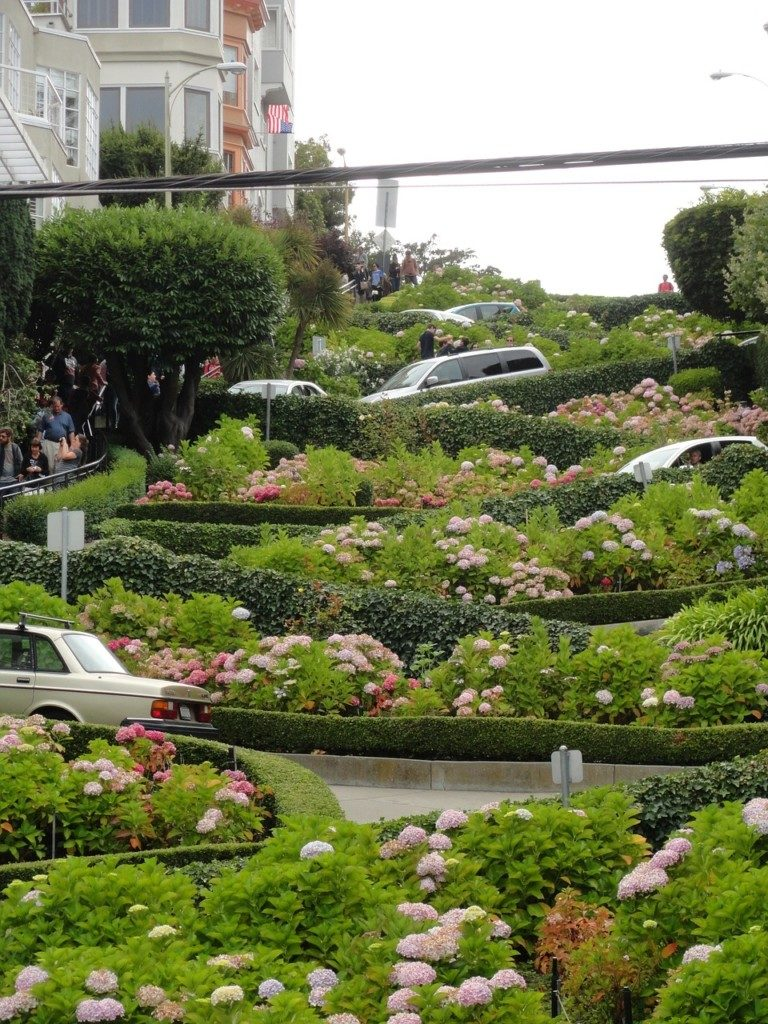 USA San Francisco Lombard Street